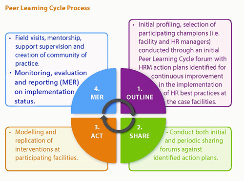 Graphic of Peer Learning Cycle process