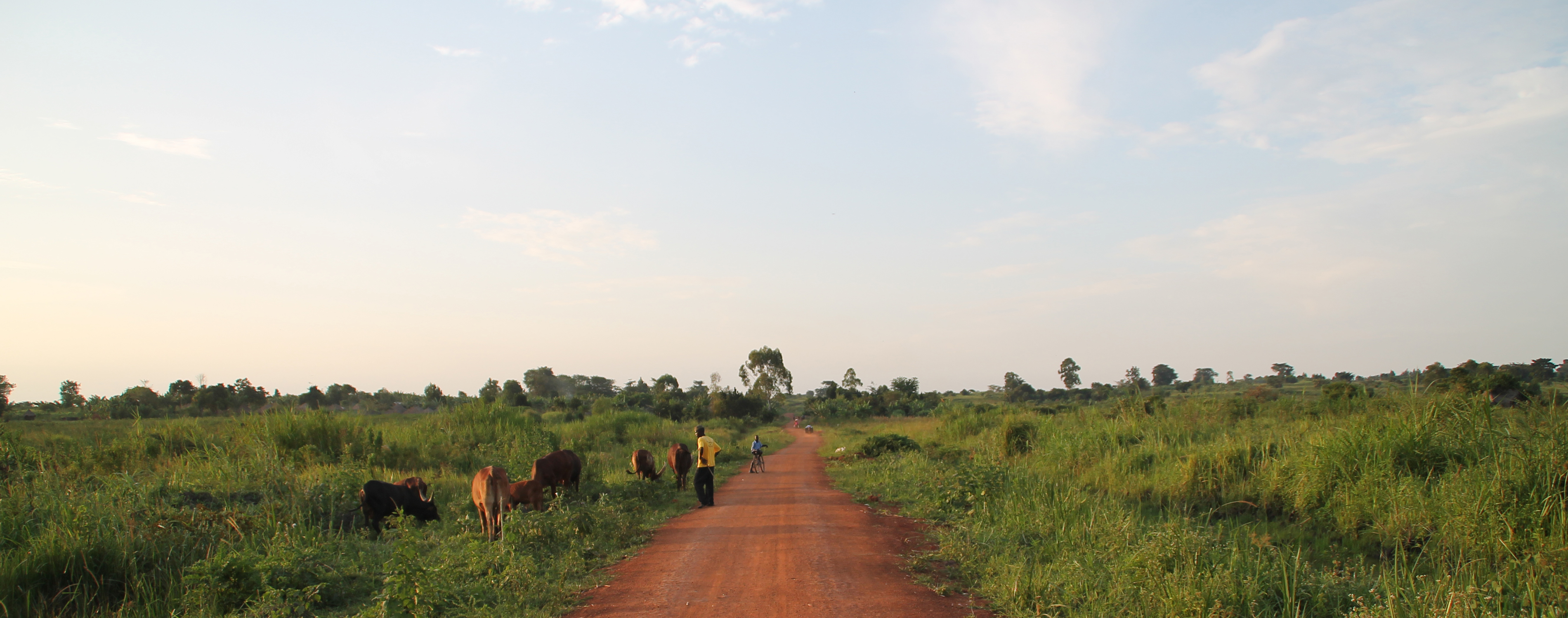 Image of dirt road and open sky