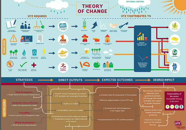 What Is This Thing Called  U0026 39 Theory Of Change U0026 39