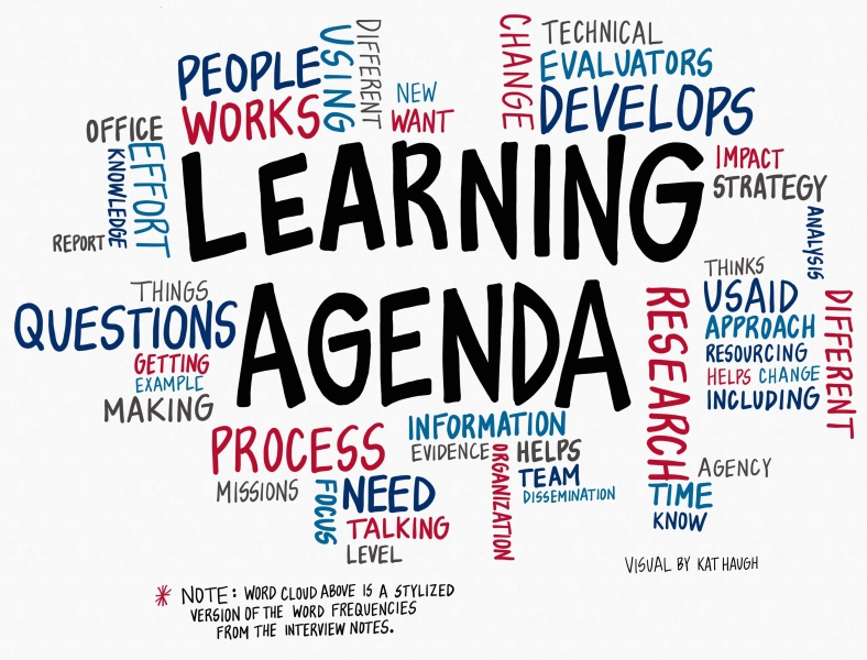 Landscape Analysis Of Learning Agendas UsaidWashington And Beyond