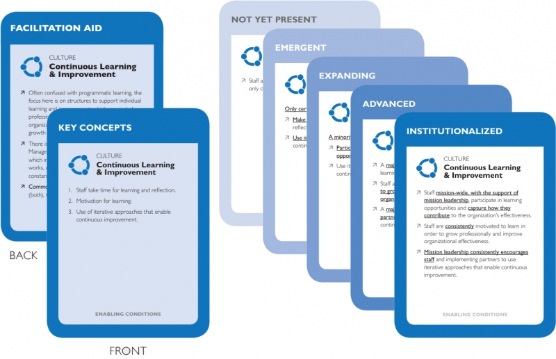 Example of the Continuous Learning and Improvement subcomponent cards from the maturity tool